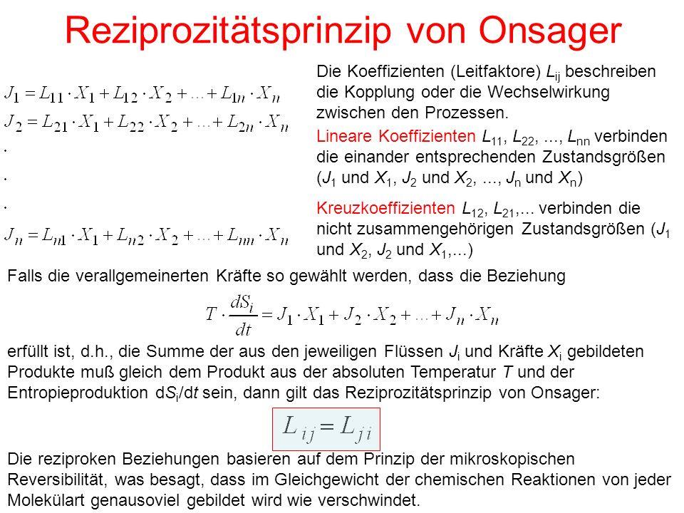 Reziprozitätsprinzip von Onsager Die Koeffizienten (Leitfaktore) L ij beschreiben die Kopplung oder die Wechselwirkung zwischen den Prozessen. Lineare