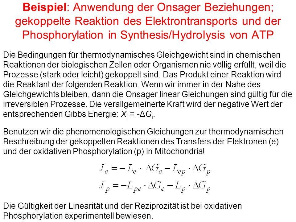 Beispiel: Anwendung der Onsager Beziehungen; gekoppelte Reaktion des Elektrontransports und der Phosphorylation in Synthesis/Hydrolysis von ATP Die Bedingungen für thermodynamisches Gleichgewicht sind in chemischen Reaktionen der biologischen Zellen oder Organismen nie völlig erfüllt, weil die Prozesse (stark oder leicht) gekoppelt sind.