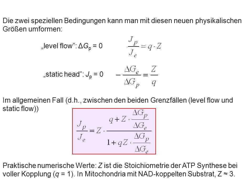 """Die zwei speziellen Bedingungen kann man mit diesen neuen physikalischen Größen umformen: """"level flow : ΔG p = 0 """"static head : J p = 0 Im allgemeinen Fall (d.h., zwischen den beiden Grenzfällen (level flow und static flow)) Praktische numerische Werte: Z ist die Stoichiometrie der ATP Synthese bei voller Kopplung (q = 1)."""