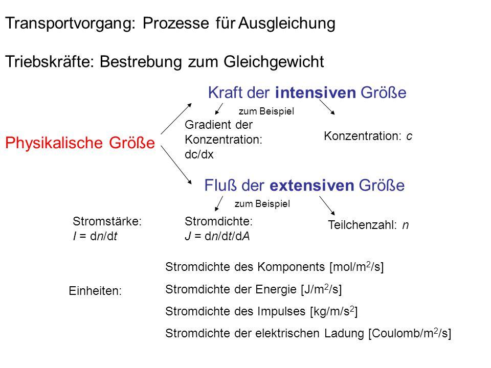 Transportvorgang: Prozesse für Ausgleichung Triebskräfte: Bestrebung zum Gleichgewicht Physikalische Größe Fluß der extensiven Größe Kraft der intensiven Größe Stromdichte des Komponents [mol/m 2 /s] Stromdichte der Energie [J/m 2 /s] Stromdichte des Impulses [kg/m/s 2 ] Stromdichte der elektrischen Ladung [Coulomb/m 2 /s] Konzentration: c Gradient der Konzentration: dc/dx zum Beispiel Teilchenzahl: n Stromdichte: J = dn/dt/dA Einheiten: Stromstärke: I = dn/dt