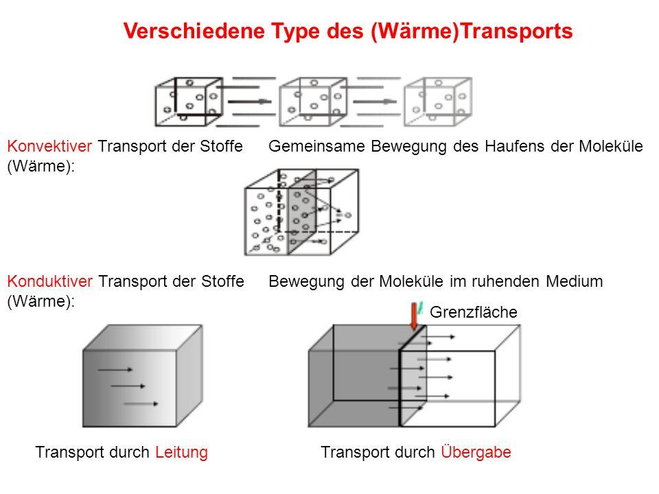 Grenzfläche Transport durch LeitungTransport durch Übergabe Konduktiver Transport der Stoffe (Wärme): Konvektiver Transport der Stoffe (Wärme): Gemein