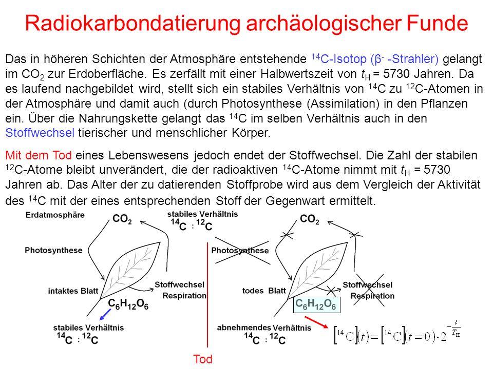 Radiokarbondatierung archäologischer Funde Das in höheren Schichten der Atmosphäre entstehende 14 C-Isotop (β - -Strahler) gelangt im CO 2 zur Erdoberfläche.