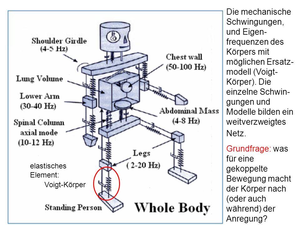 Die mechanische Schwingungen, und Eigen- frequenzen des Körpers mit möglichen Ersatz- modell (Voigt- Körper). Die einzelne Schwin- gungen und Modelle