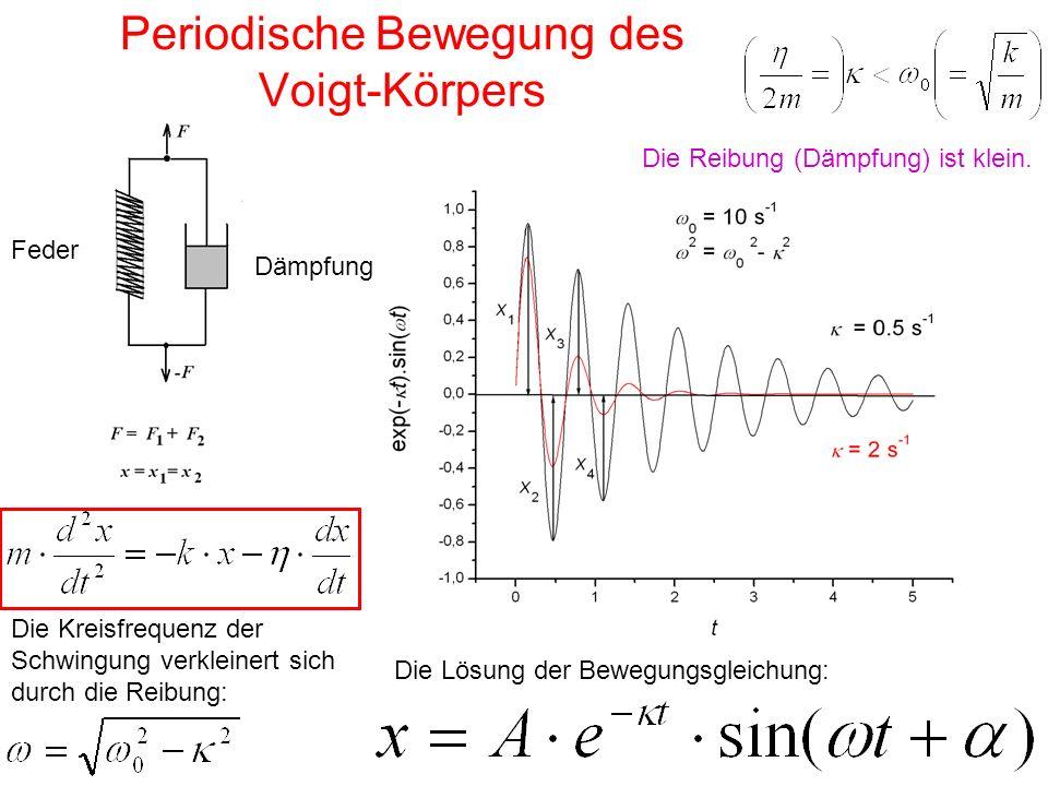 Periodische Bewegung des Voigt-Körpers Die Kreisfrequenz der Schwingung verkleinert sich durch die Reibung: Die Lösung der Bewegungsgleichung: Feder D