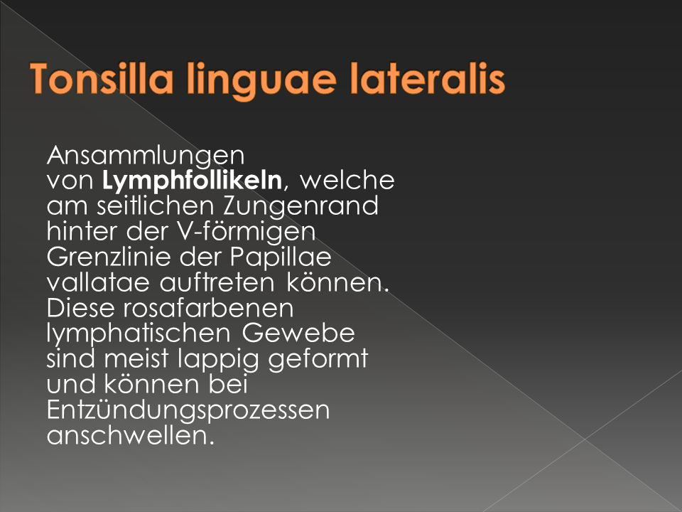 Ansammlungen von Lymphfollikeln, welche am seitlichen Zungenrand hinter der V-förmigen Grenzlinie der Papillae vallatae auftreten können. Diese rosafa