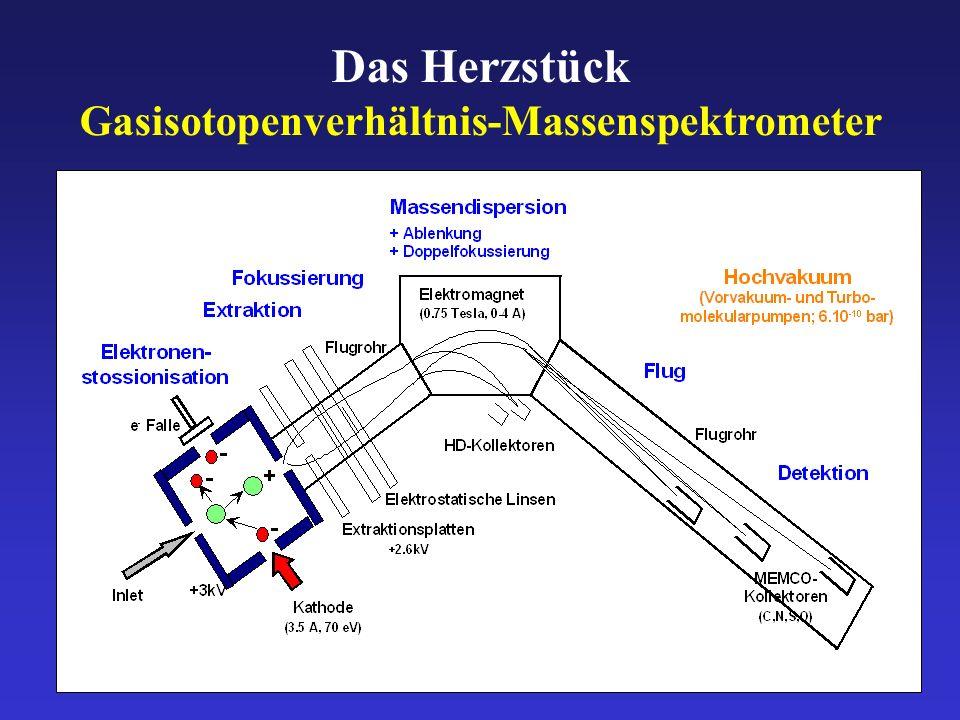 Das Herzstück Gasisotopenverhältnis-Massenspektrometer