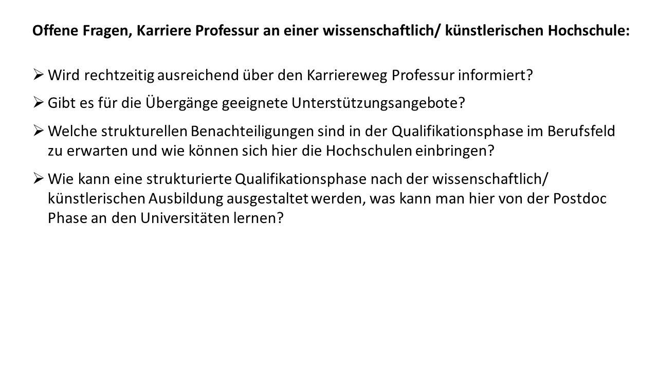  Wird rechtzeitig ausreichend über den Karriereweg Professur informiert.
