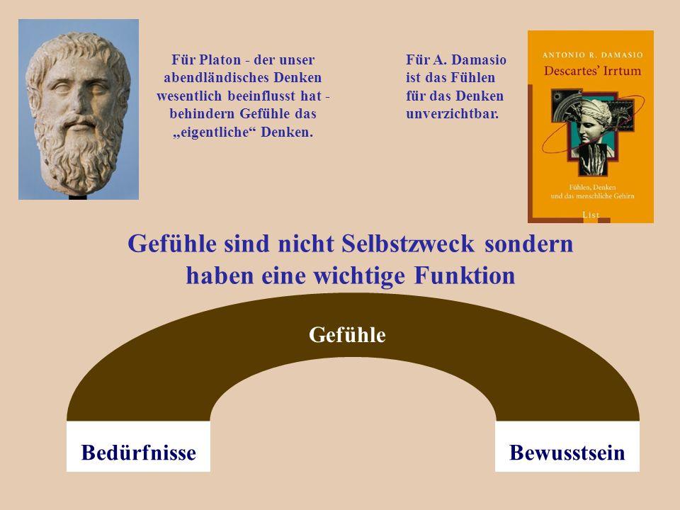 """Gefühle sind nicht Selbstzweck sondern haben eine wichtige Funktion BewusstseinBedürfnisse Gefühle Für Platon - der unser abendländisches Denken wesentlich beeinflusst hat - behindern Gefühle das """"eigentliche Denken."""