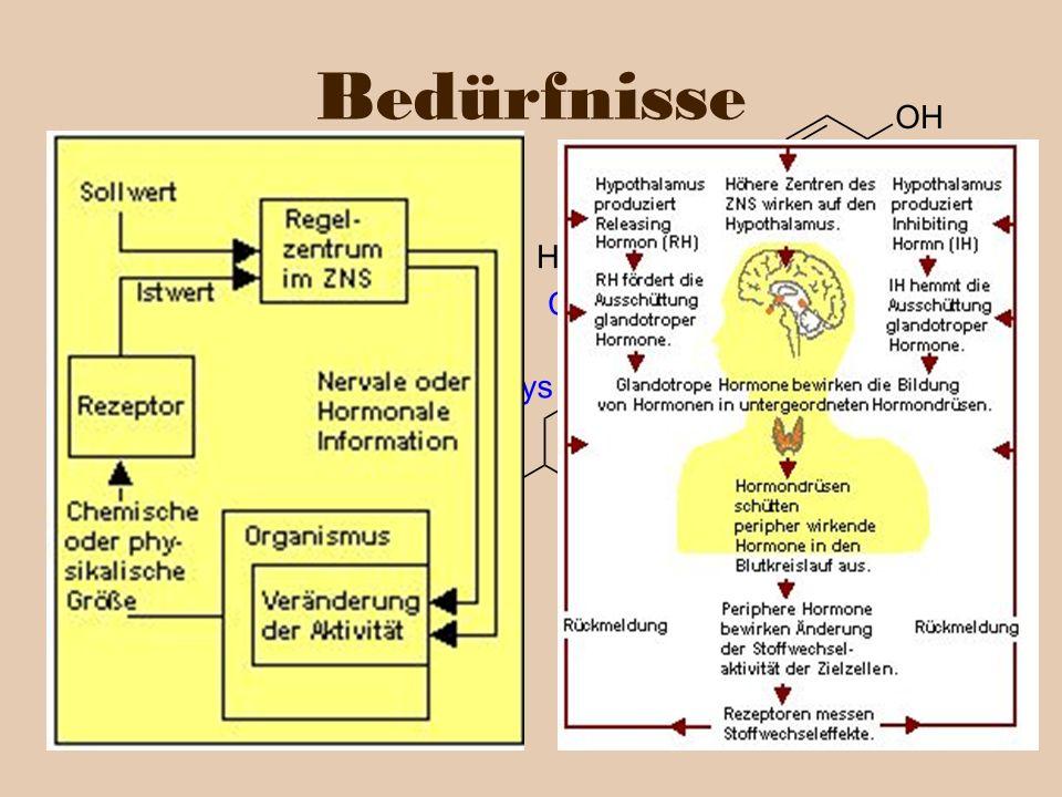 … lassen sich als bio-chemische Prozesse beschreiben. Bedürfnisse