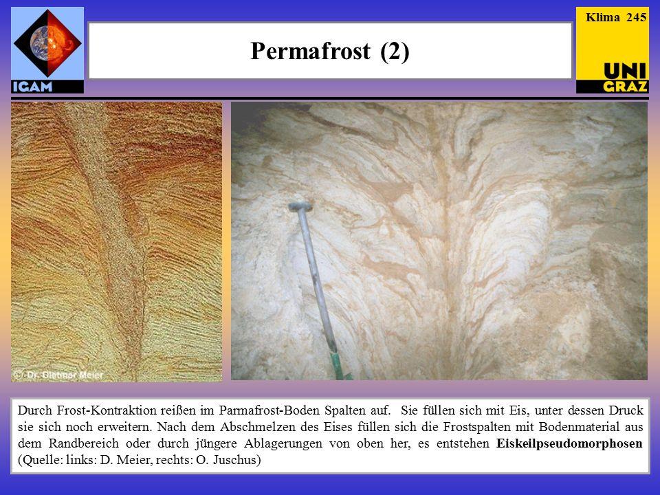 Permafrost (2) Klima 245 Durch Frost-Kontraktion reißen im Parmafrost-Boden Spalten auf.