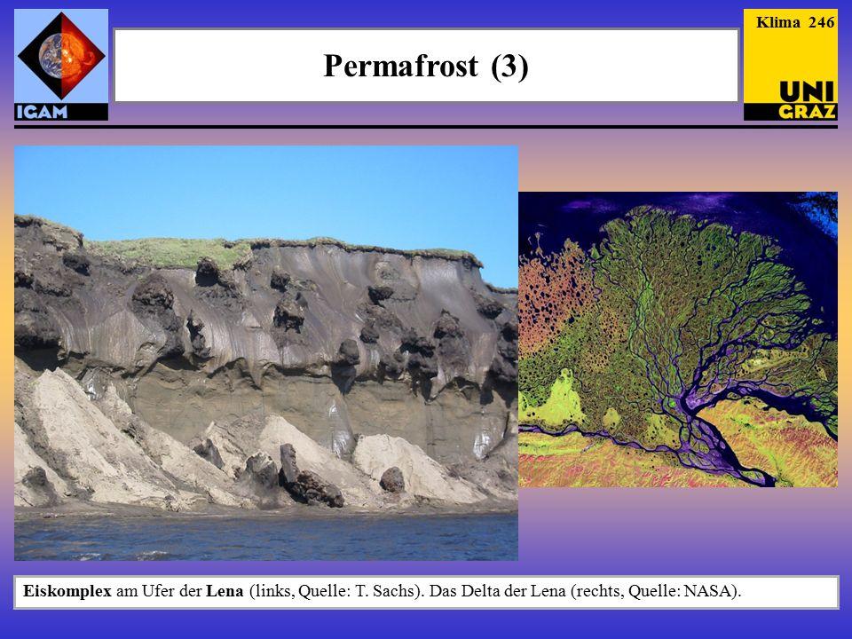 Permafrost (3) Klima 246 Eiskomplex am Ufer der Lena (links, Quelle: T.