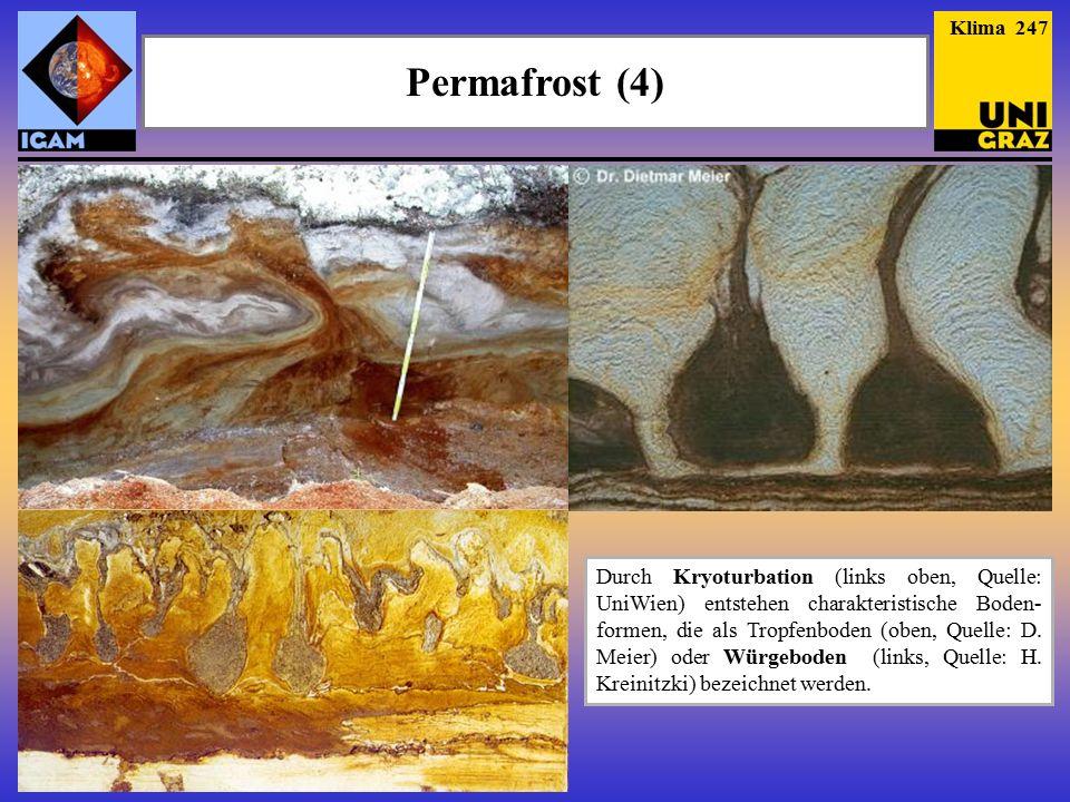 Permafrost (4) Klima 247 Durch Kryoturbation (links oben, Quelle: UniWien) entstehen charakteristische Boden- formen, die als Tropfenboden (oben, Quelle: D.