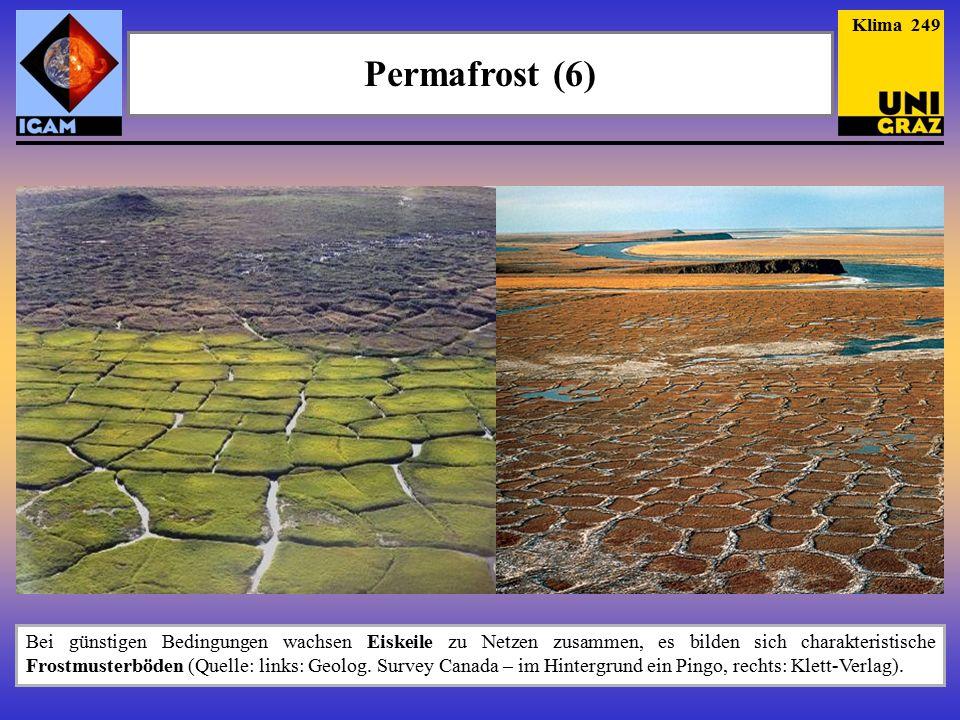 Permafrost (6) Klima 249 Bei günstigen Bedingungen wachsen Eiskeile zu Netzen zusammen, es bilden sich charakteristische Frostmusterböden (Quelle: links: Geolog.