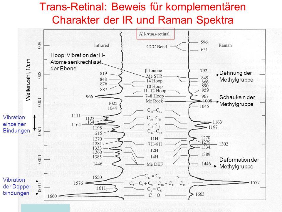 Trans-Retinal: Beweis für komplementären Charakter der IR und Raman Spektra Wellenzahl, 1/cm Dehnung der Methylgruppe Schaukeln der Methylgruppe Defor