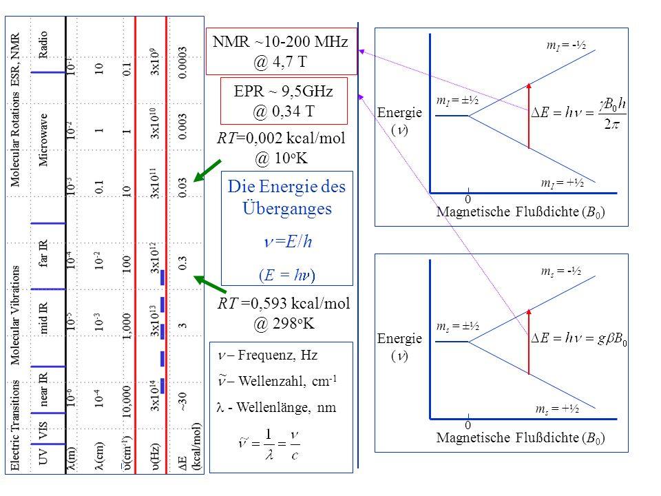 Die Energie des Überganges =E/h (E = h  Energie ( ) Magnetische Flußdichte (B 0 ) 0 Energie ( ) Magnetische Flußdichte (B 0 ) 0 m I = ±½ m I = -½ m I