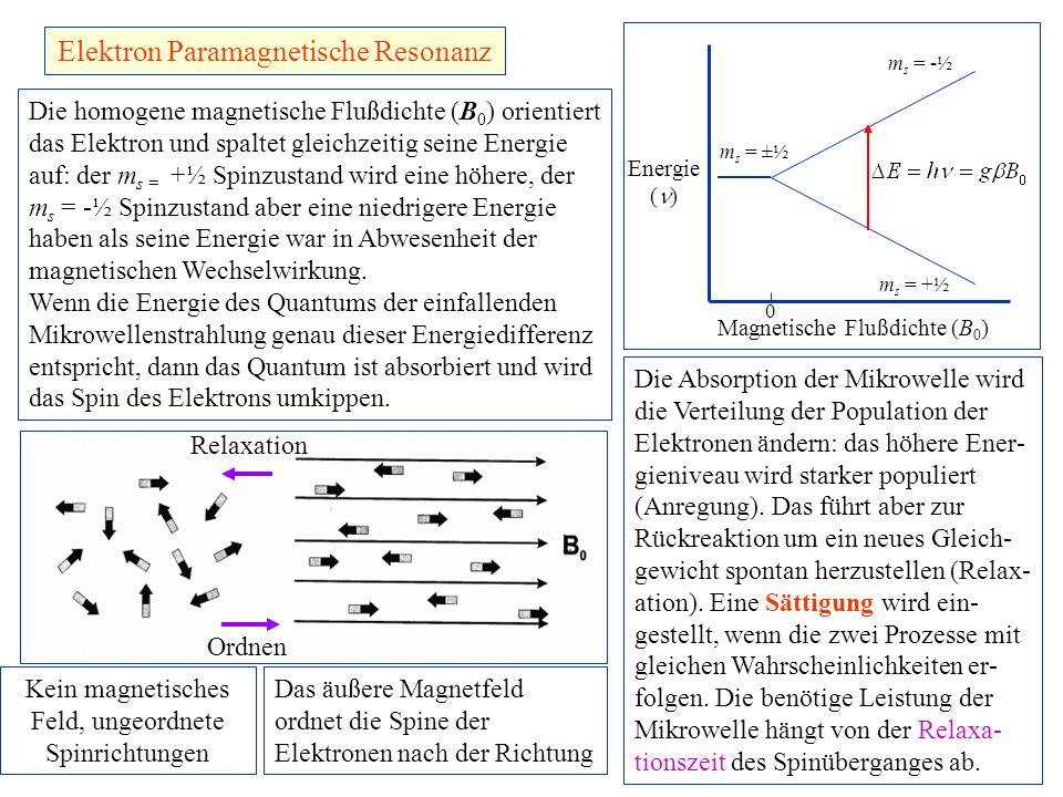 Elektron Paramagnetische Resonanz Energie ( ) Magnetische Flußdichte (B 0 ) 0 m s = ±½ m s = -½ m s = +½ Die homogene magnetische Flußdichte (B 0 ) or