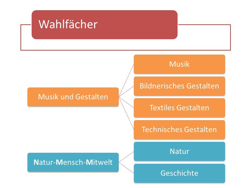 Wahlfächer Musik und GestaltenMusikBildnerisches GestaltenTextiles GestaltenTechnisches GestaltenNatur-Mensch-MitweltNaturGeschichte
