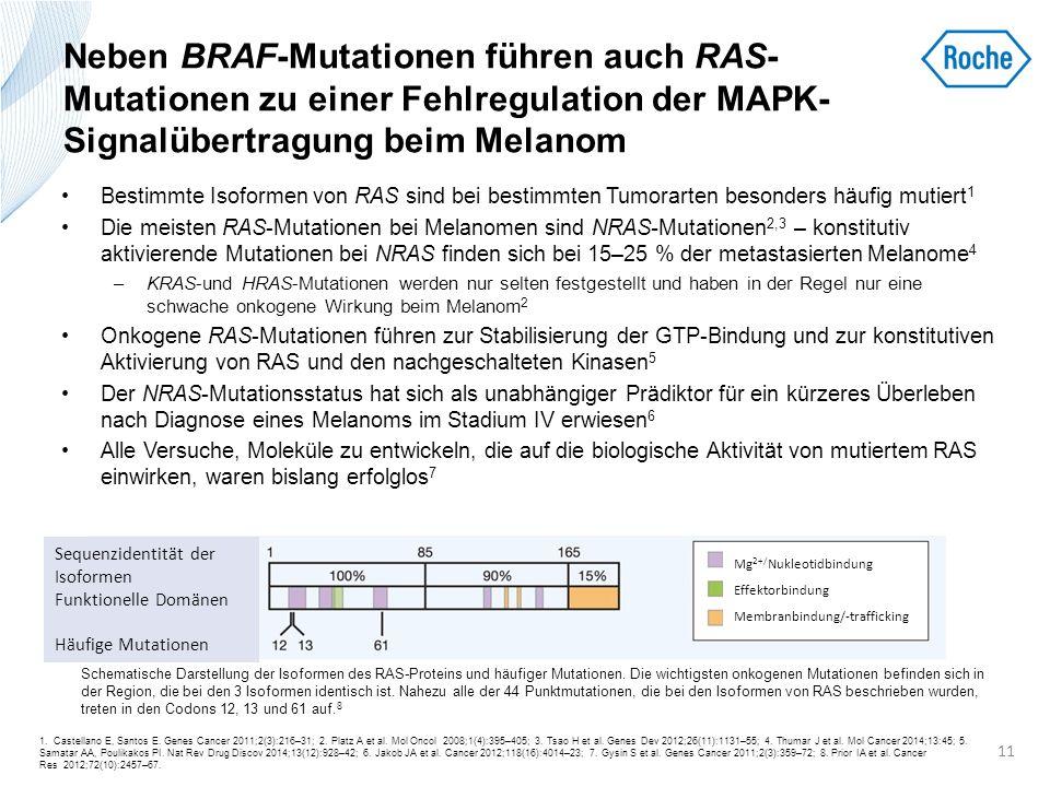Neben BRAF-Mutationen führen auch RAS- Mutationen zu einer Fehlregulation der MAPK- Signalübertragung beim Melanom Bestimmte Isoformen von RAS sind be