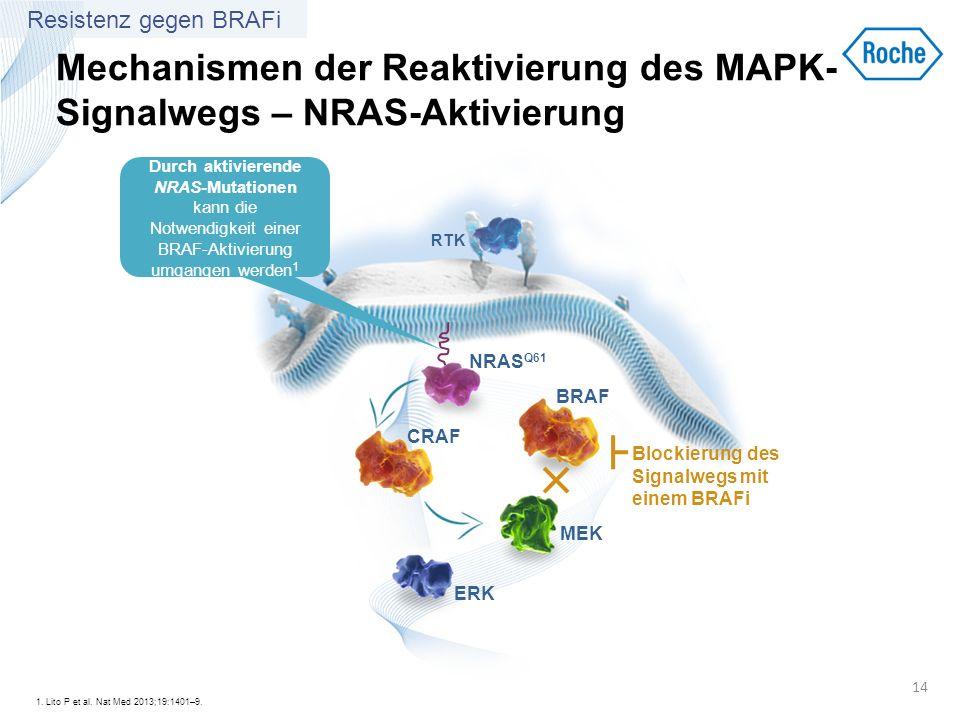 Mechanismen der Reaktivierung des MAPK- Signalwegs – NRAS-Aktivierung 1. Lito P et al. Nat Med 2013;19:1401–9. 14 RTK BRAF MEK ERK NRAS Q61 Durch akti