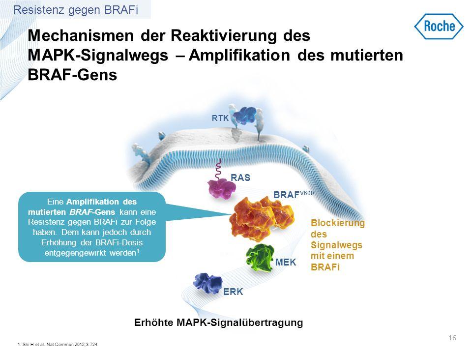 Mechanismen der Reaktivierung des MAPK-Signalwegs – Amplifikation des mutierten BRAF-Gens 1. Shi H et al. Nat Commun 2012;3:724. 16 RTK BRAF V600 MEK