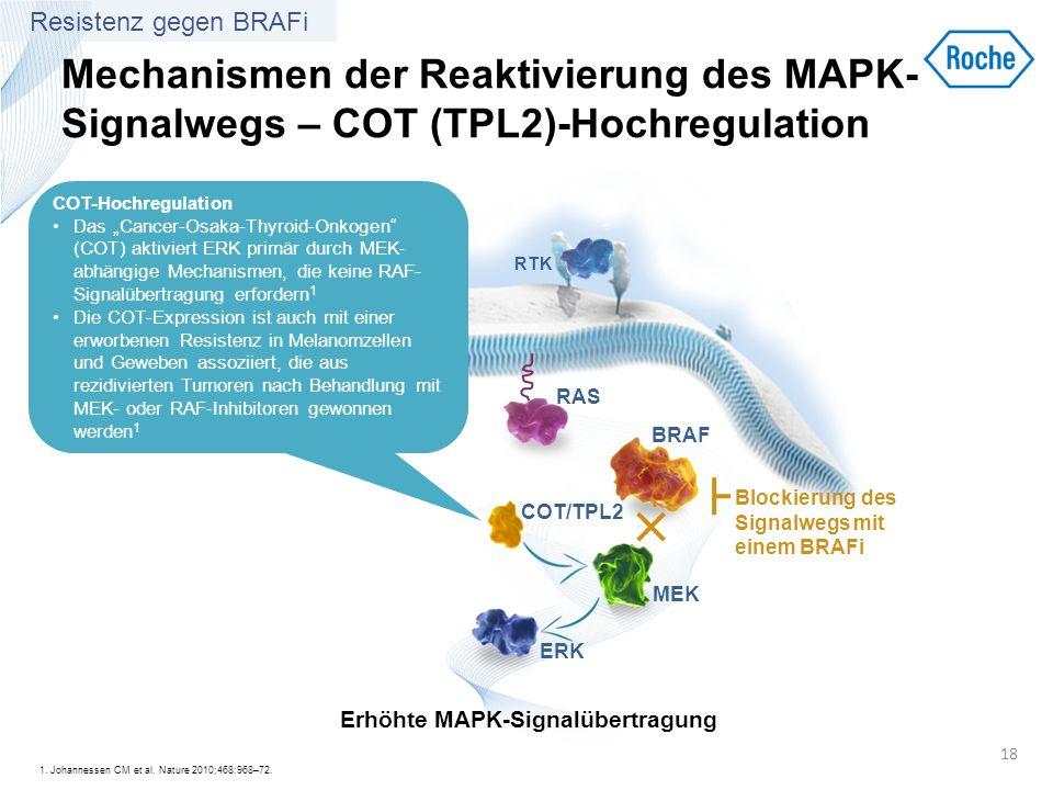 Mechanismen der Reaktivierung des MAPK- Signalwegs – COT (TPL2)-Hochregulation 1. Johannessen CM et al. Nature 2010;468:968–72. 18 RTK BRAF MEK ERK RA