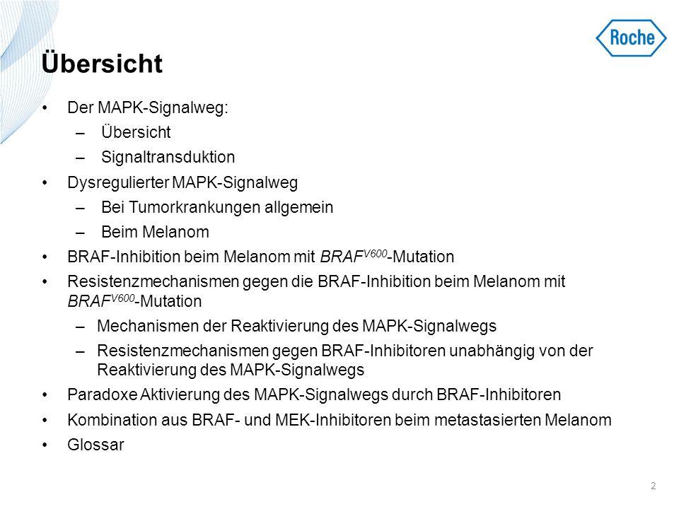 Resistenzmechanismen gegen BRAFi beim Melanom mit BRAF V600 -Mutation Letztendlich entwickelt sich bei Melanompatienten mit BRAF V600 -Mutation eine Resistenz, die zur Krankheitsprogression führt 1–3 Resistenzmechanismen 4–6 1.Reaktivierung des MAPK-Signalwegs 2.Erhöhte Signalübertragung durch den PI3K/AKT-Signalweg Eine Reaktivierung des MAPK-Signalwegs wird in 70 % der BRAF V600 -Melanome beobachtet, die eine Resistenz gegen BRAFi entwickeln 6 1.
