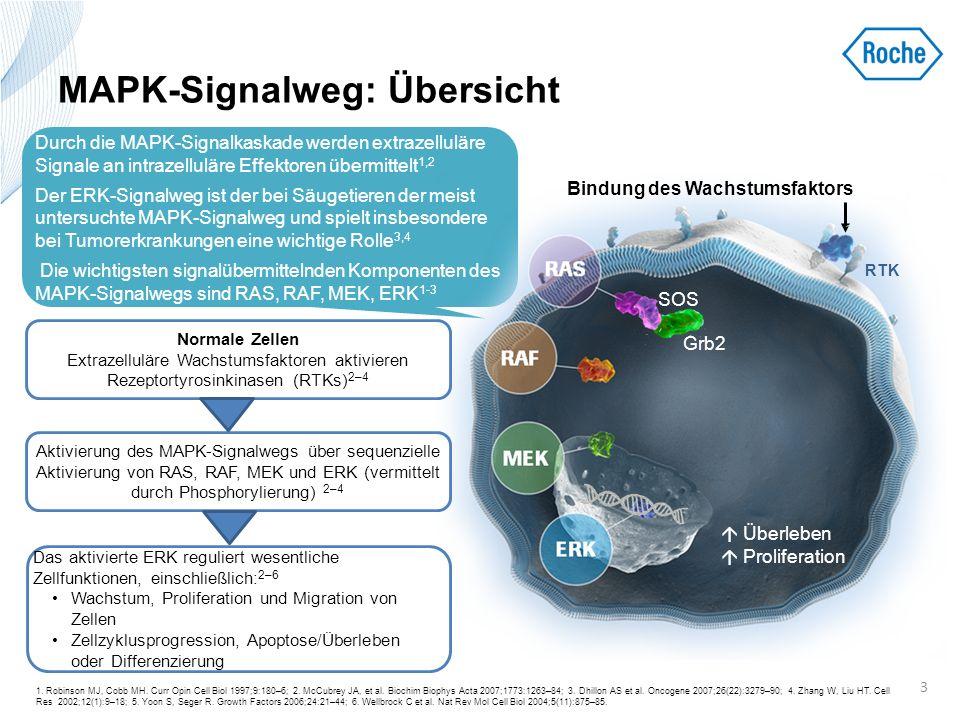 Mechanismen der Reaktivierung des MAPK- Signalwegs – NRAS-Aktivierung 1.