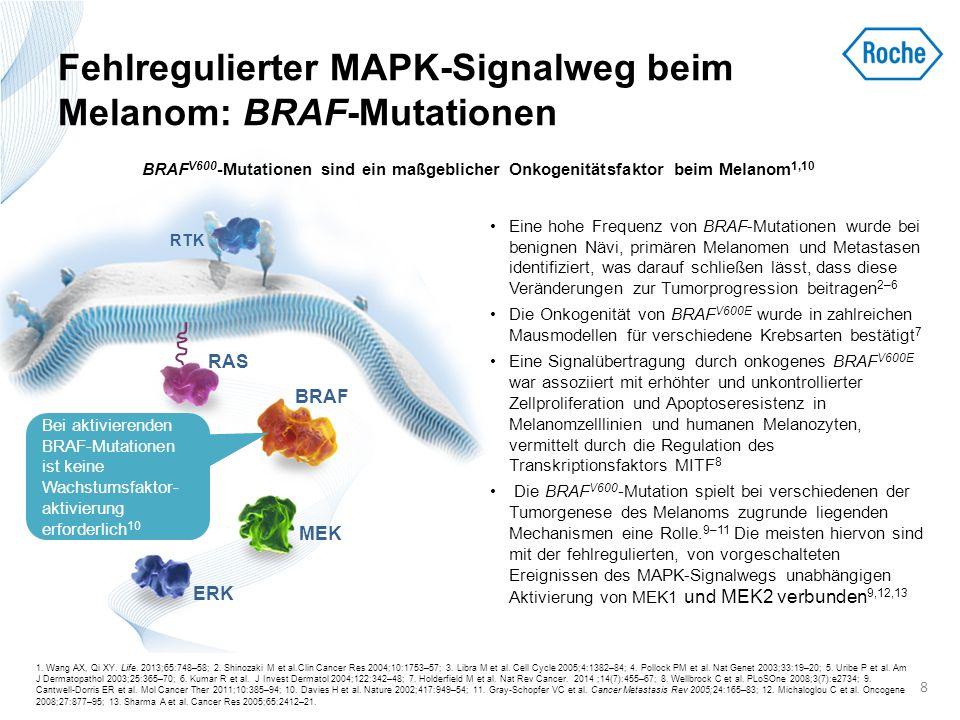 Neben BRAF-Mutationen führen auch Rezeptorveränderungen zu einer Fehlregulation der MAPK-Signalübertragung beim Melanom Der MAPK-Signalweg wird primär durch Mutationen der BRAF- und RAS- Gene aktiviert.