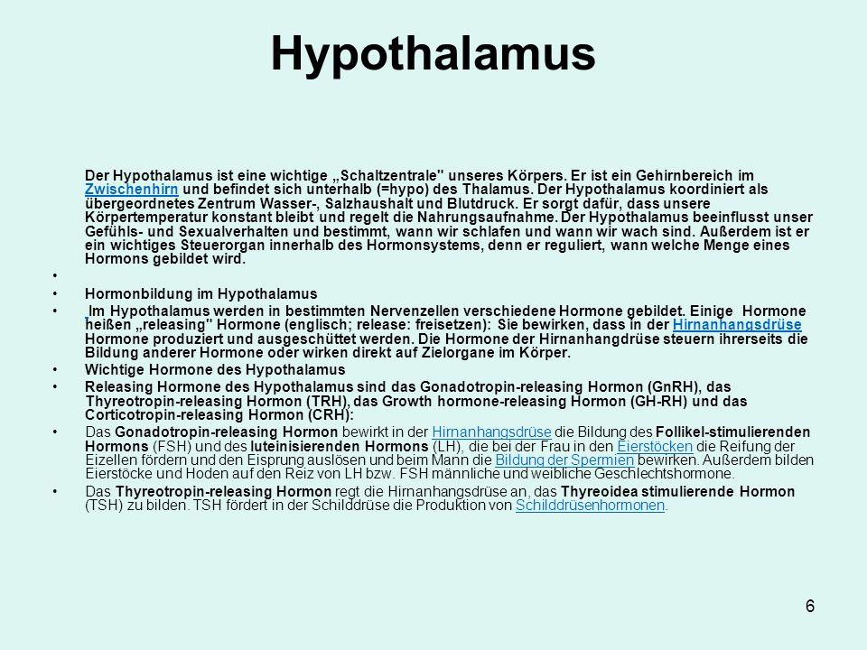 """6 Hypothalamus Der Hypothalamus ist eine wichtige """"Schaltzentrale"""