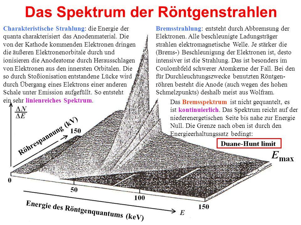 Das Spektrum der Röntgenstrahlen Charakteristische Strahlung: die Energie der quanta charakterisiert das Anodenmaterial. Die von der Kathode kommenden