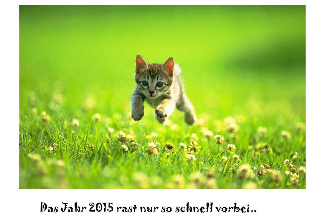 Liebe Einwohnerinnen und Einwohner Liebe Mitarbeitende der Gemeinde Moosseedorf In wenigen Wochen endet das Jahr 2015.