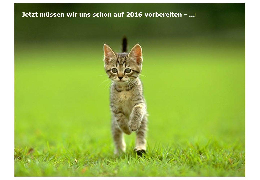 Jetzt müssen wir uns schon auf 2016 vorbereiten -...