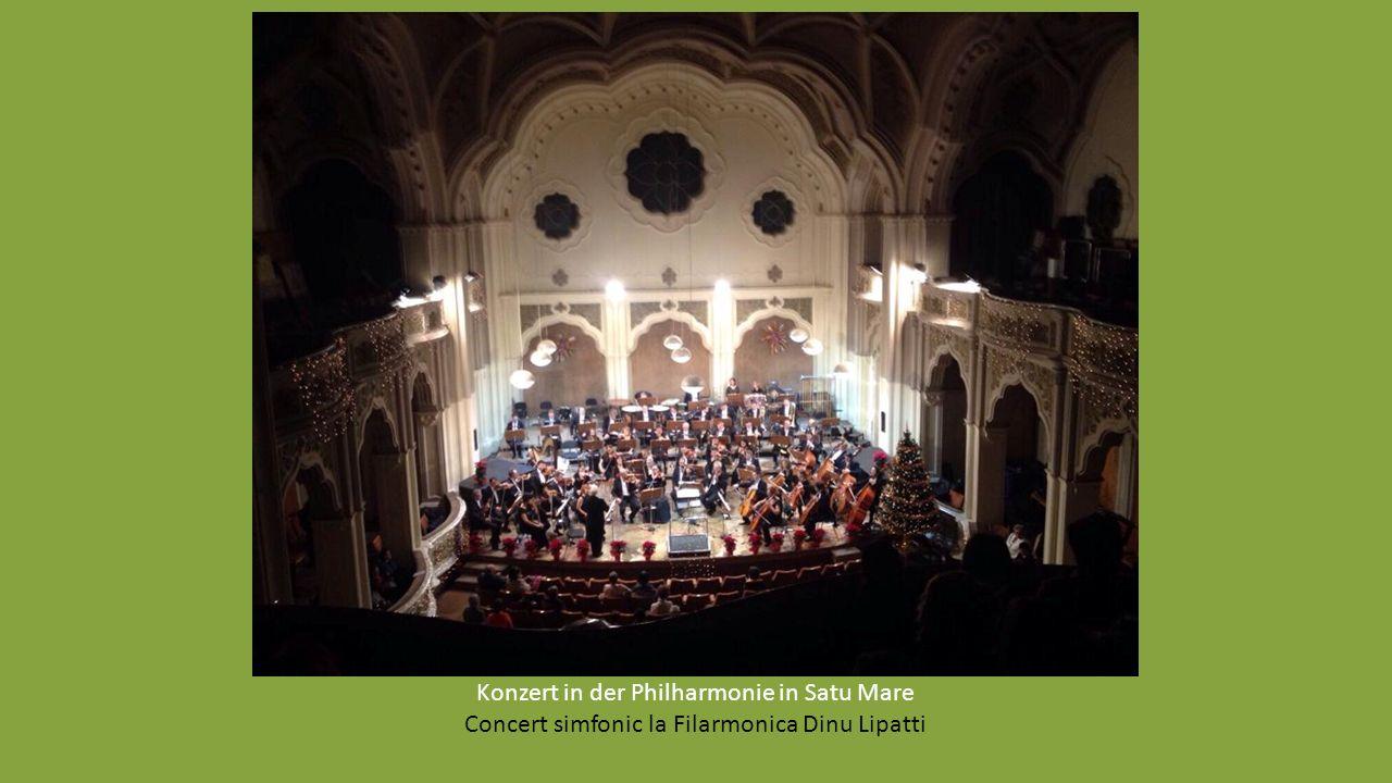 Besuch in der Philarmonie- Die wichtige Rolle der roma Musikanten in Satu Mare-Herr Csirák Csaba Vizită la Filarmonica Dinu Lipatti- Rolul important a