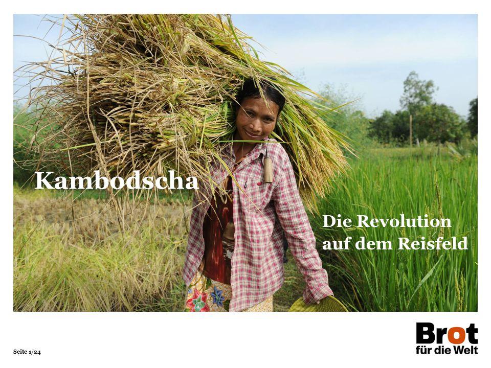 Seite 2/24 Kambodscha KambodschaDeutschland Fläche in km²181.035357.121 Bevölkerung in Millionen 15,780,5 Bevölkerungsdichte in Einwohner/km²87225 Säuglingssterblichkeit in %5,00,3 Lebenserwartung Männer6278 Frauen6783 Analphabetenrate in % Männer15,5< 1 Frauen29,5< 1 Bruttoinlandsprodukt in Dollar/Kopf3.30044.700 Quellen: Bundeszentrale für politische Bildung (2015), CIA World Factbook (2015) Kambodscha