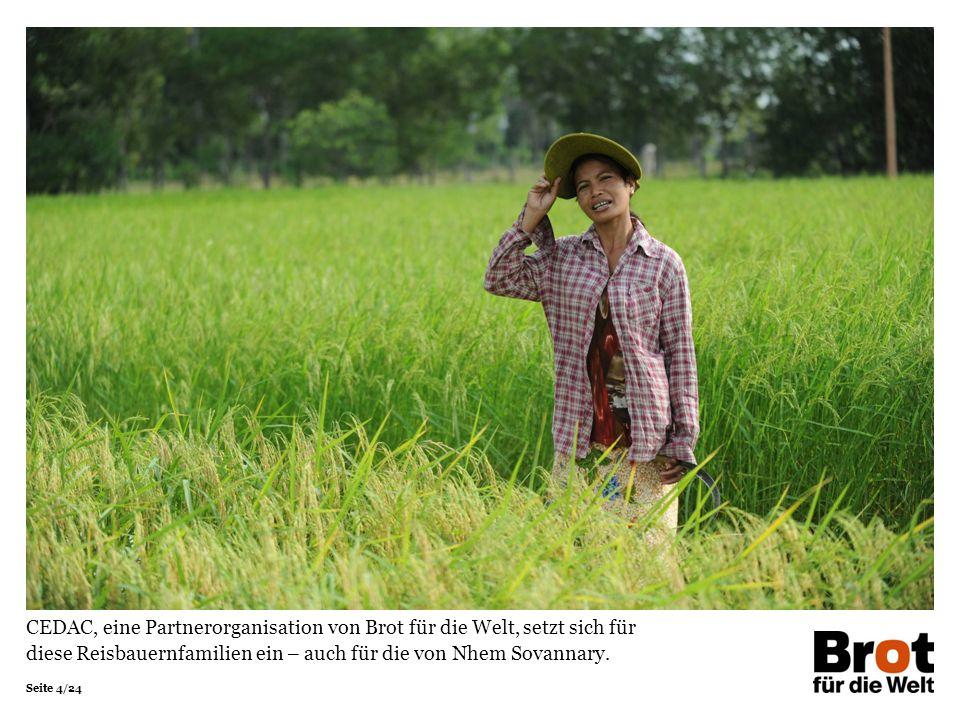 Seite 4/24 CEDAC, eine Partnerorganisation von Brot für die Welt, setzt sich für diese Reisbauernfamilien ein – auch für die von Nhem Sovannary.