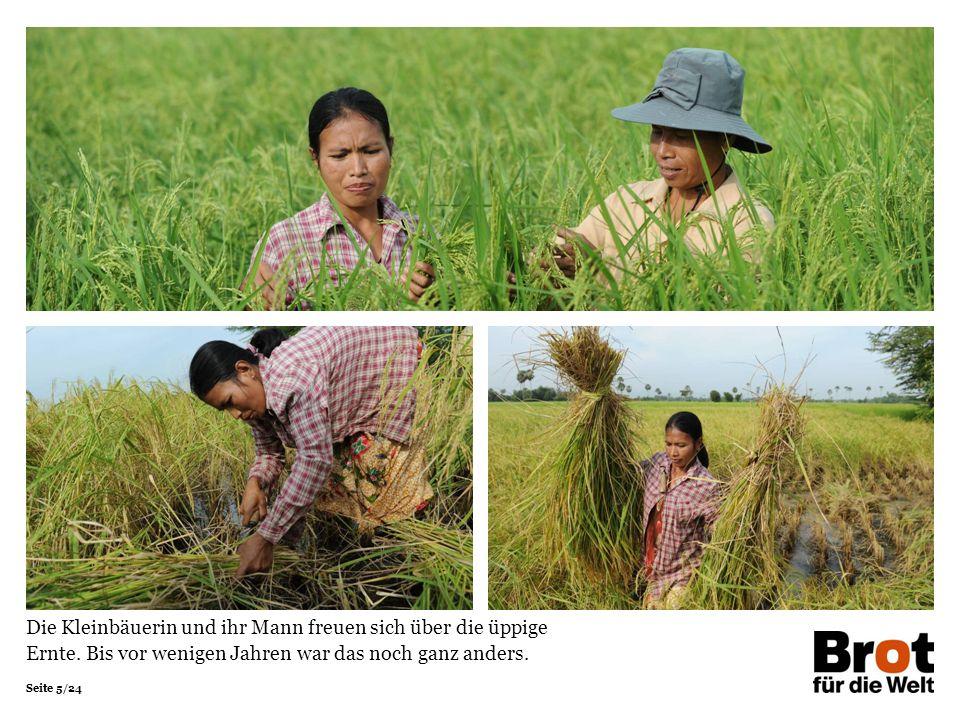 Seite 16/24 Harte Arbeit und viel Wissen stecken hinter dem Erfolg: Sovannary weiß alles über die optimale Aussaat, Pflege, Düngung, Bewässerung und Ernte.