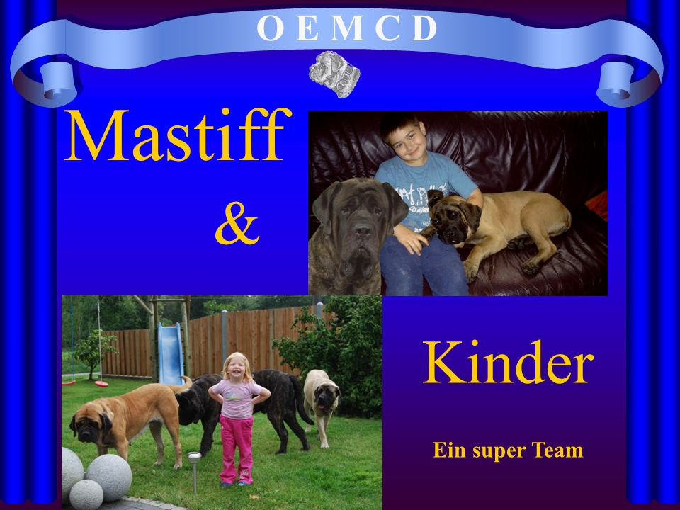 O E M C D Mastiff & Kinder Ein super Team