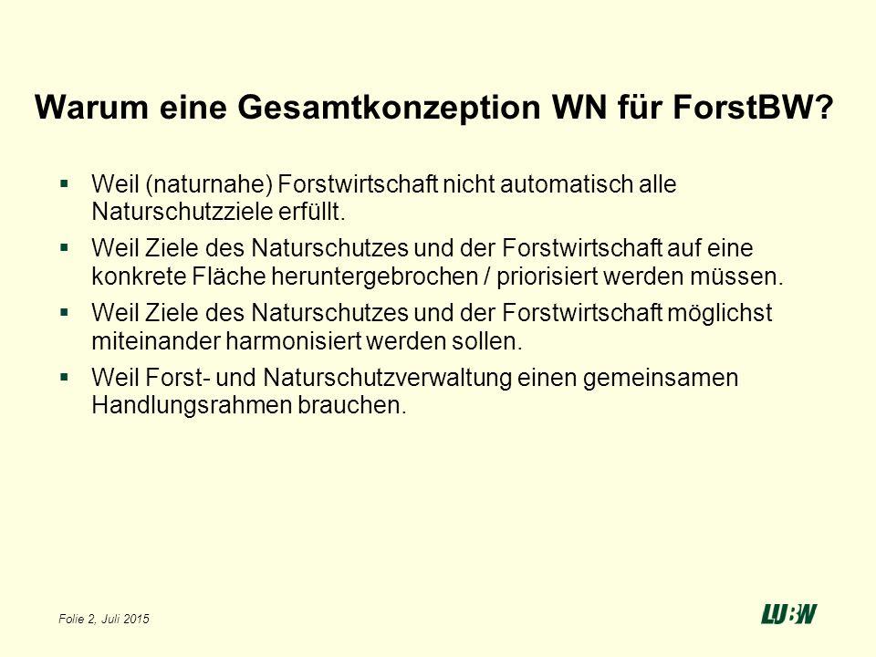 Warum eine Gesamtkonzeption WN für ForstBW?  Weil (naturnahe) Forstwirtschaft nicht automatisch alle Naturschutzziele erfüllt.  Weil Ziele des Natur