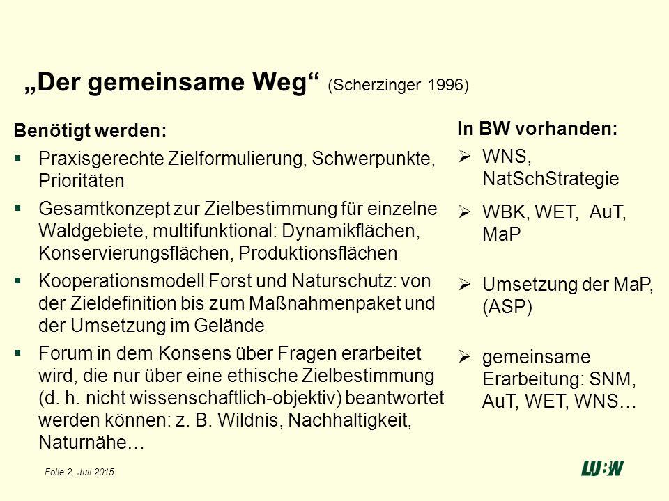 """Folie 2, Juli 2015 """"Der gemeinsame Weg"""" (Scherzinger 1996) Benötigt werden:  Praxisgerechte Zielformulierung, Schwerpunkte, Prioritäten  Gesamtkonze"""
