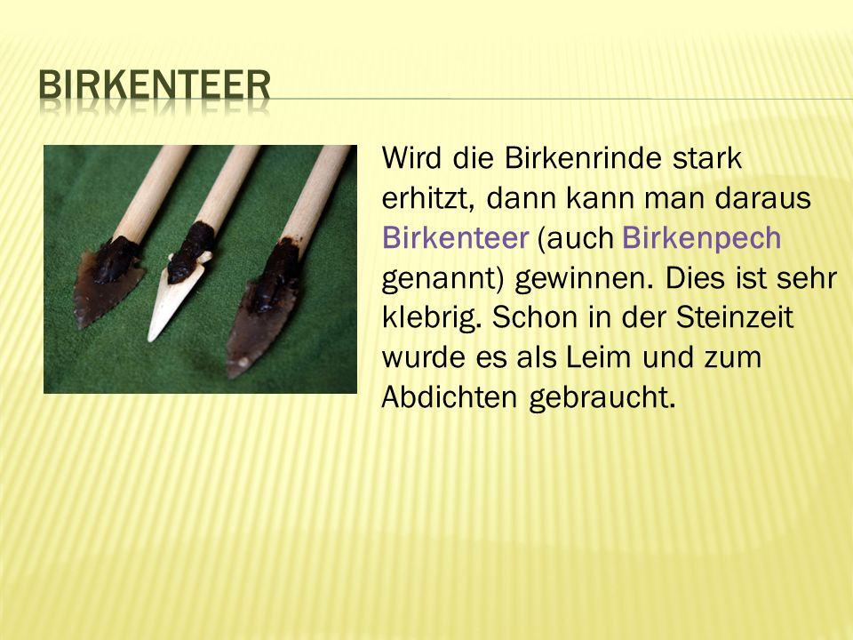 Wird die Birkenrinde stark erhitzt, dann kann man daraus Birkenteer (auch Birkenpech genannt) gewinnen.