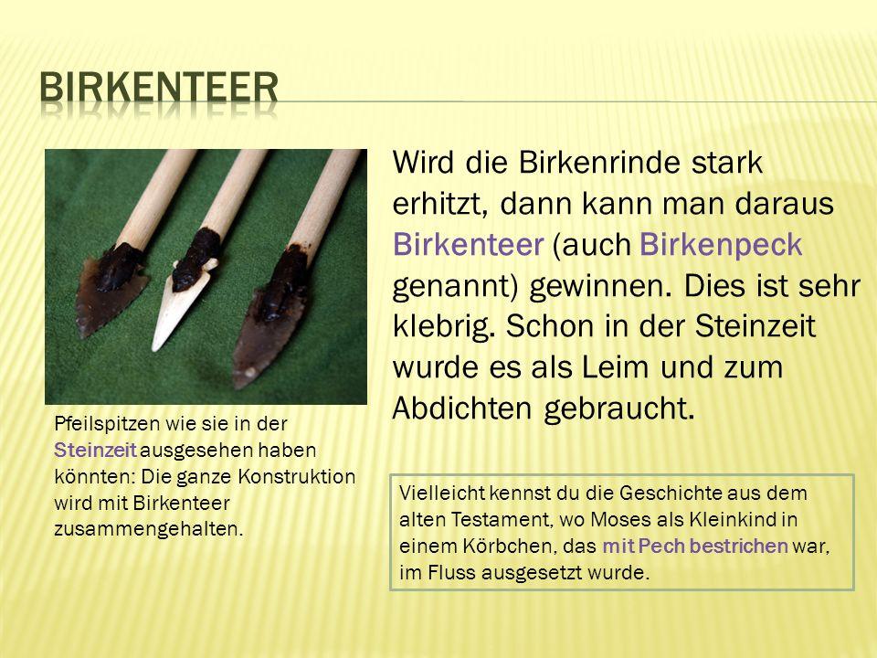 Wird die Birkenrinde stark erhitzt, dann kann man daraus Birkenteer (auch Birkenpeck genannt) gewinnen.