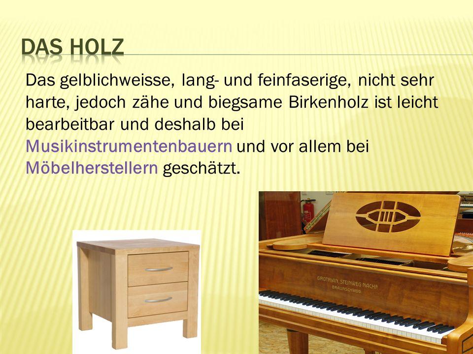 Das gelblichweisse, lang- und feinfaserige, nicht sehr harte, jedoch zähe und biegsame Birkenholz ist leicht bearbeitbar und deshalb bei Musikinstrumentenbauern und vor allem bei Möbelherstellern geschätzt.