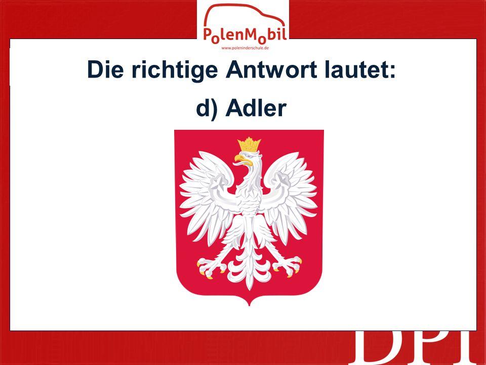 Die richtige Antwort lautet: d) Adler