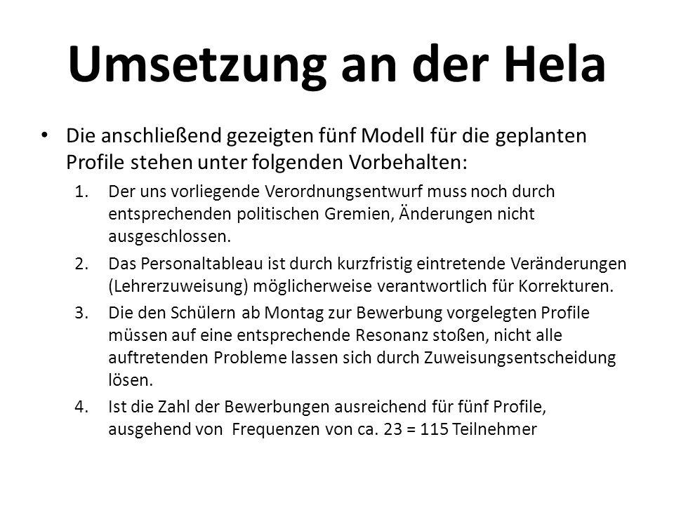 Umsetzung an der Hela Die anschließend gezeigten fünf Modell für die geplanten Profile stehen unter folgenden Vorbehalten: 1.Der uns vorliegende Veror