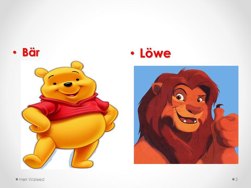 Löwe Löwe Herr Waleed3 Bär Bär