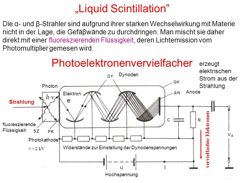 """""""Liquid Scintillation"""" Die α- und β-Strahler sind aufgrund ihrer starken Wechselwirkung mit Materie nicht in der Lage, die Gefäβwände zu durchdringen."""