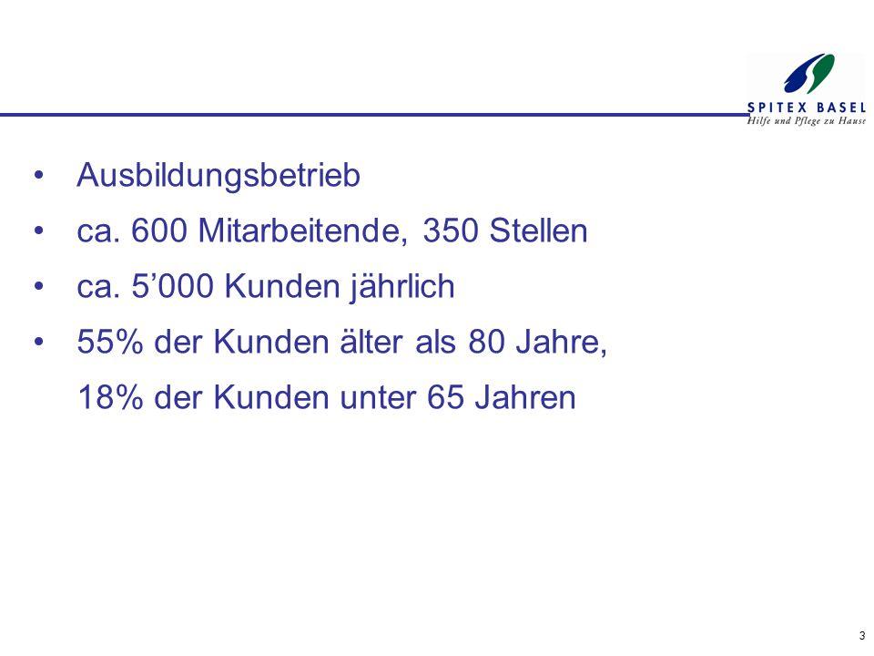 Award für Logistik (Beispiel Spitex Basel 2014) Anzahl Stunden Pflege / HW:361'060 Anzahl Einsätze Pflege / HW:536'561 umgerechnet auf 24 Std.