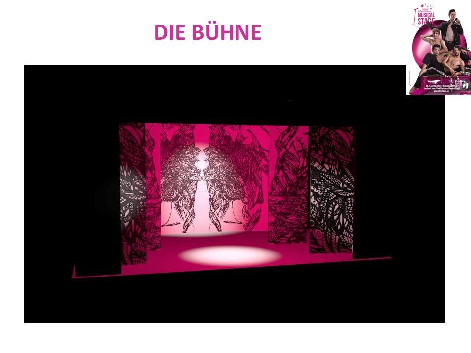 DAS PROGRAMM IM EINZELNEN Der Pink-Musical-Holiday am 8.12.