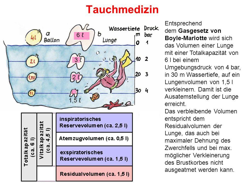 Tauchmedizin Entsprechend dem Gasgesetz von Boyle-Mariotte wird sich das Volumen einer Lunge mit einer Totalkapazität von 6 l bei einem Umgebungsdruck