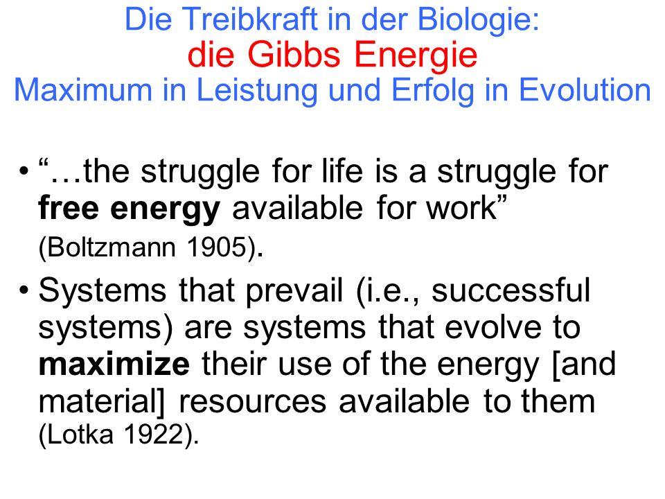 """Die Treibkraft in der Biologie: die Gibbs Energie Maximum in Leistung und Erfolg in Evolution """"…the struggle for life is a struggle for free energy av"""